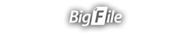 Bigfile Premium Key 180 Days - Bigfile Ueseller