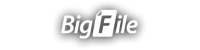 Bigfile Premium 30 days