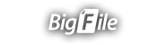 Bigfile Premium 365 days