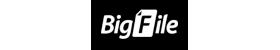 Bigfile Premium Key 365 Days - Bigfile Ueseller