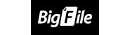 Bigfile Premium 730 days