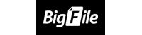 Bigfile Premium 90 days